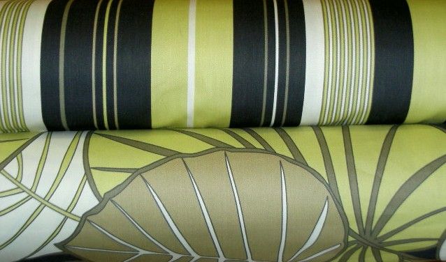 EFI High End Decorator Coordinate Patterns Fern Delight And Funstripe Color  Black Home Decor Fabric,
